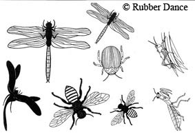 Rubber Dance - Beautiful Bugs