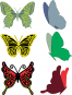 Small Exotic Butterflies #2 w/Angel Wings